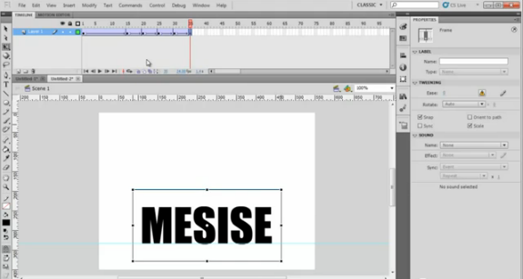 MESISE.COM – สอน FLASH อนิเมชั่นทั่วไป